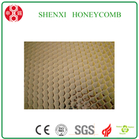 High Quality Paper Honeycomb Core for IKEA